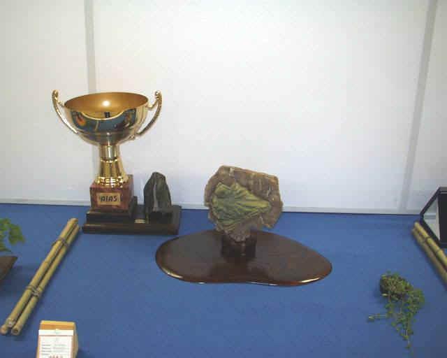 Il Trofeo AIAS 1999
