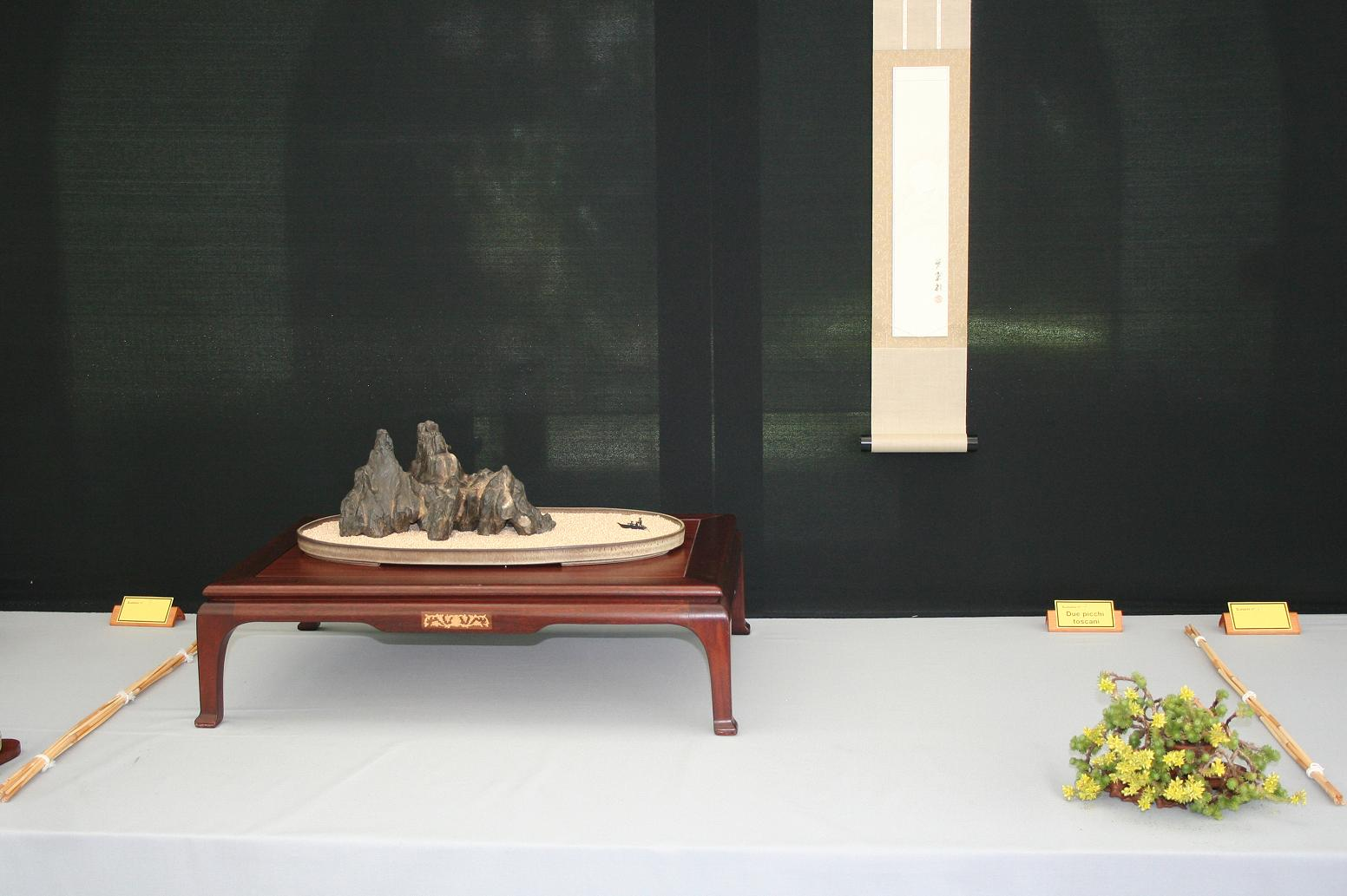 La XXIV Mostra Regionale Toscana Bonsai & Suiseki   A.I.A