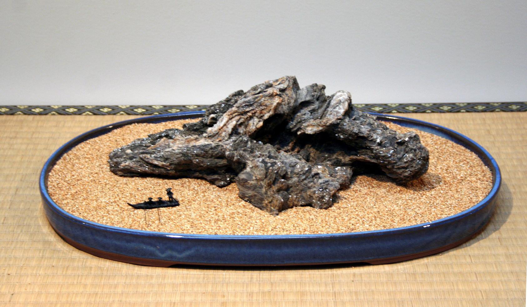 Piero bonsai do shibumi networkedblogs by ninua for Bonsai comprare